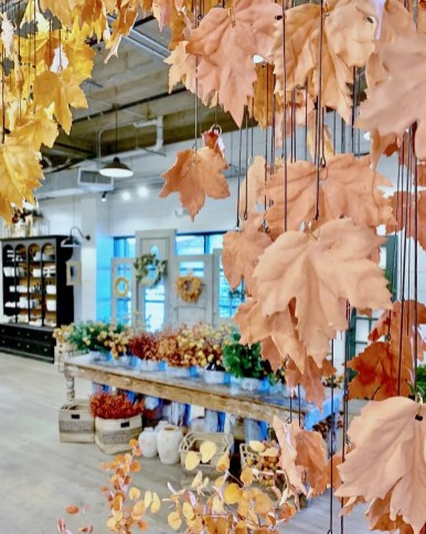 Leaves are suspended from the ceiling over a magnolia market display