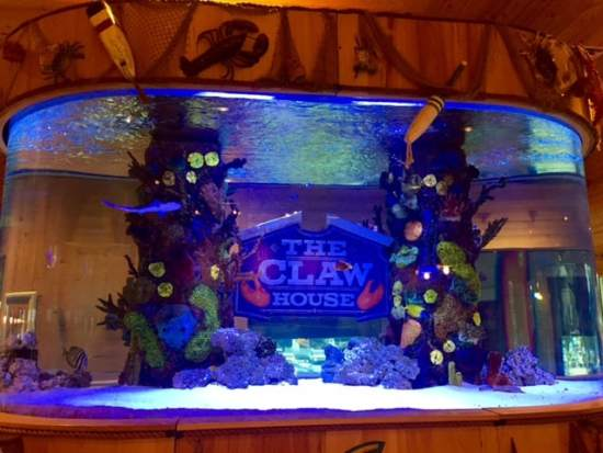 the claw house tank