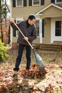 Discover how to prepare your lawn for the changing season.