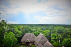 Amazon, Ecuador, Tour, tours, South Amarica
