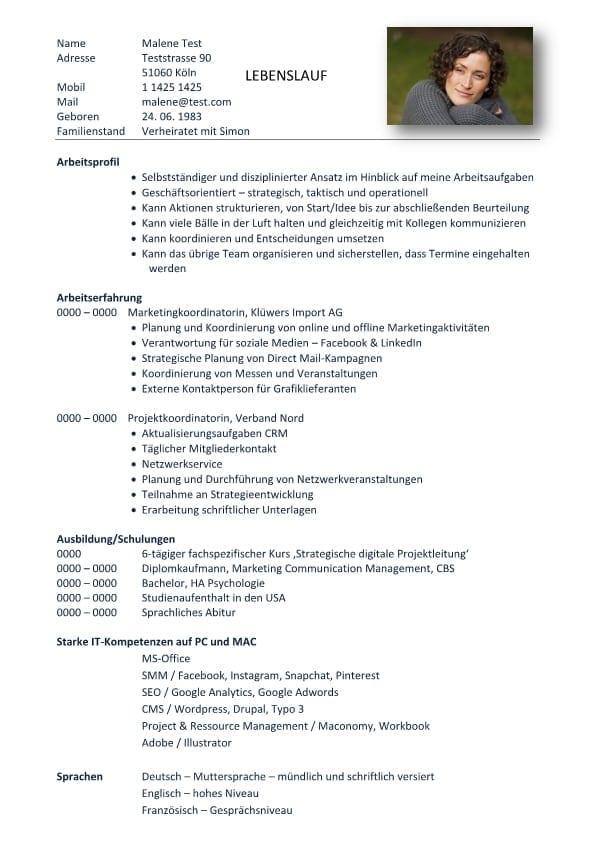Lebenslauf chronologisch mit Profil  CV  Bewerbung