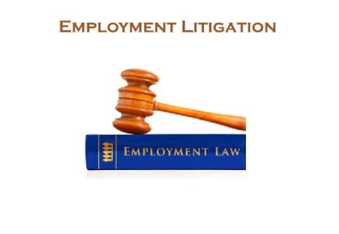 Employment Litigation