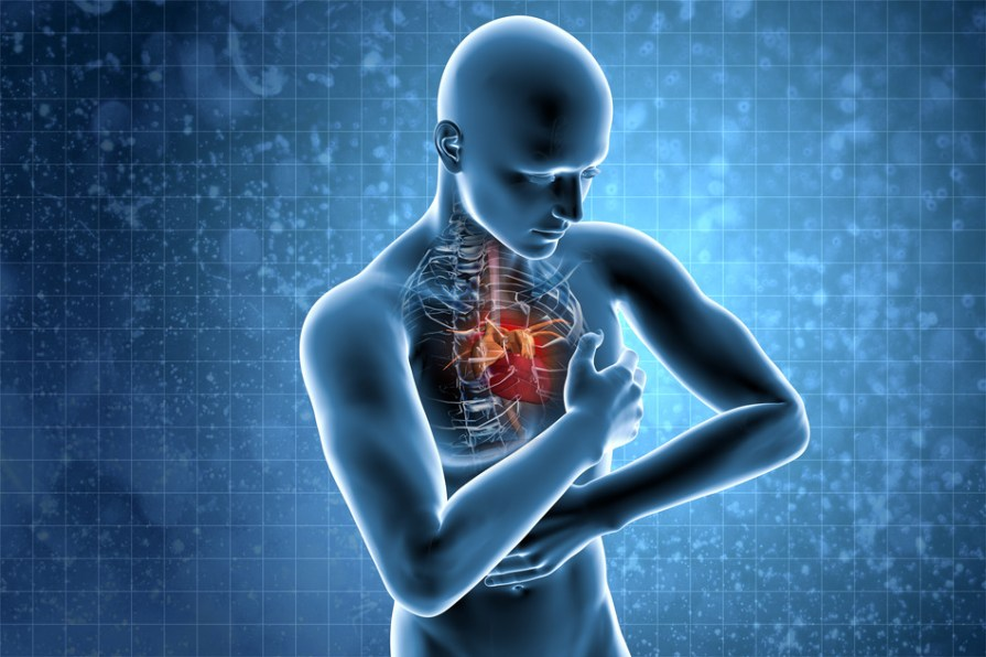 Image result for Cardiovascular Problems