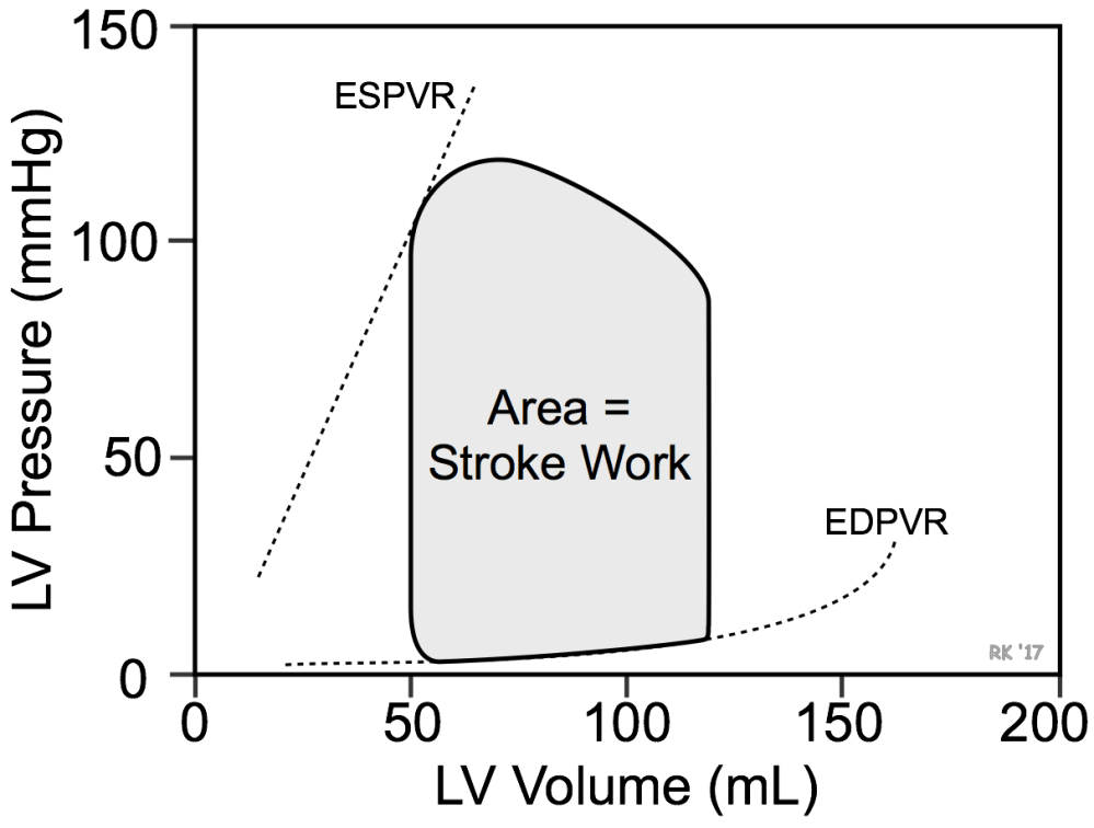 medium resolution of ventricular pressure volume loop stroke work