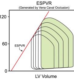 mini lecture generation of ventricular pressure volume loops time 8 7 minutes  [ 1556 x 1396 Pixel ]
