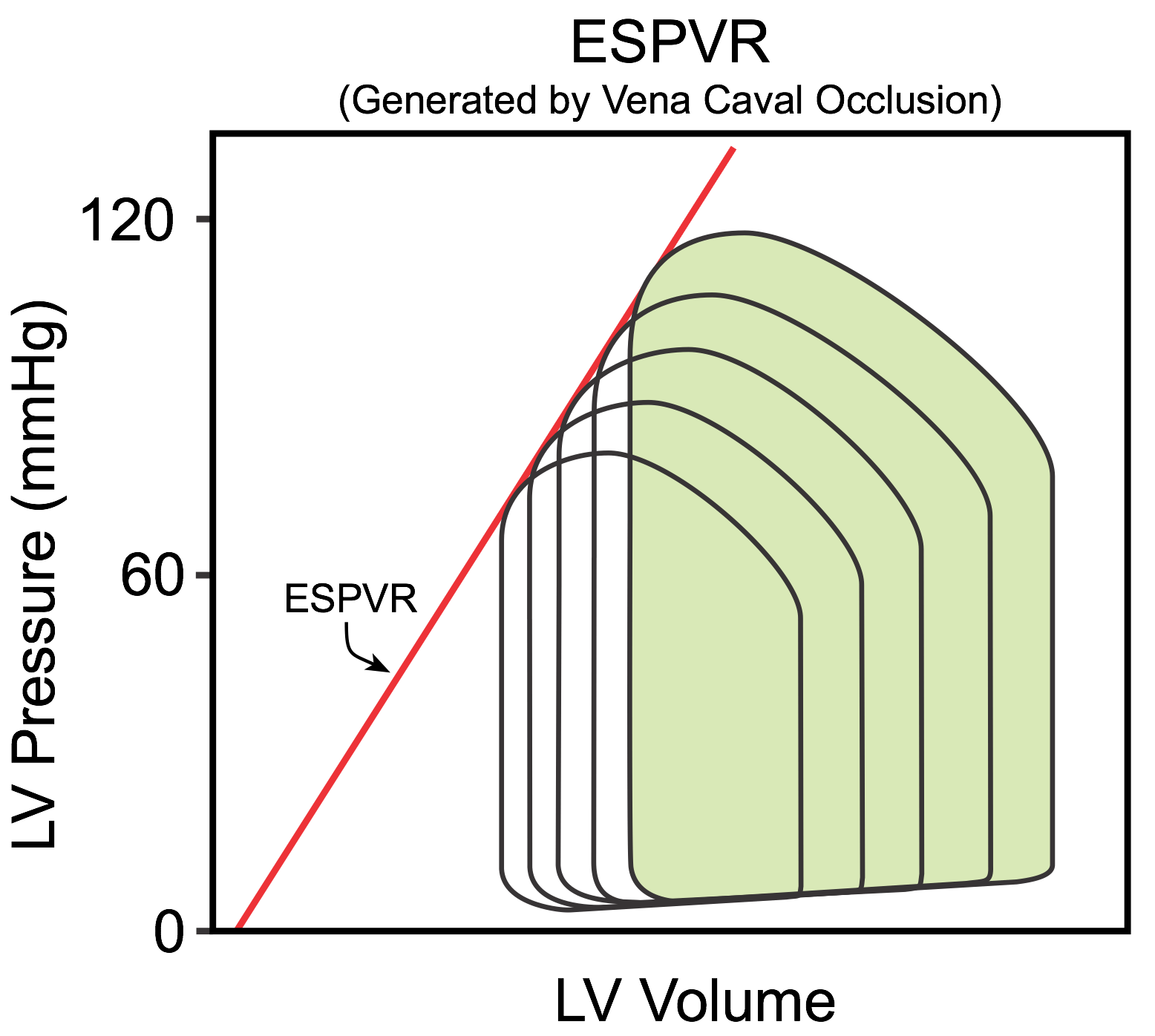 hight resolution of mini lecture generation of ventricular pressure volume loops time 8 7 minutes