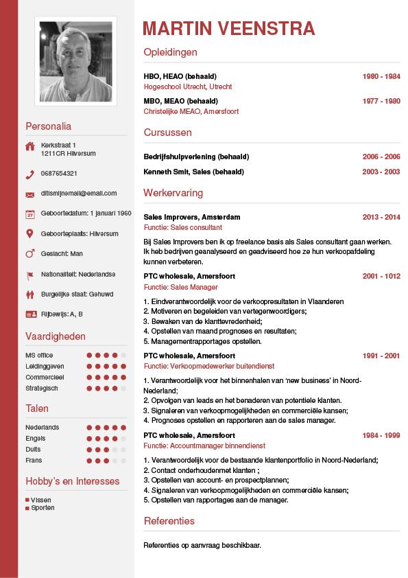 CV maken in 10 minuten? • In 3 stappen je CV downloaden - CV wizard