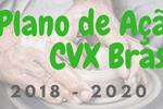 Prioridades do Plano de Ação 2018 – 2020 da CVX Brasil