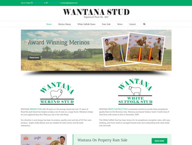 Website Designers Wallan - Wantana Stud