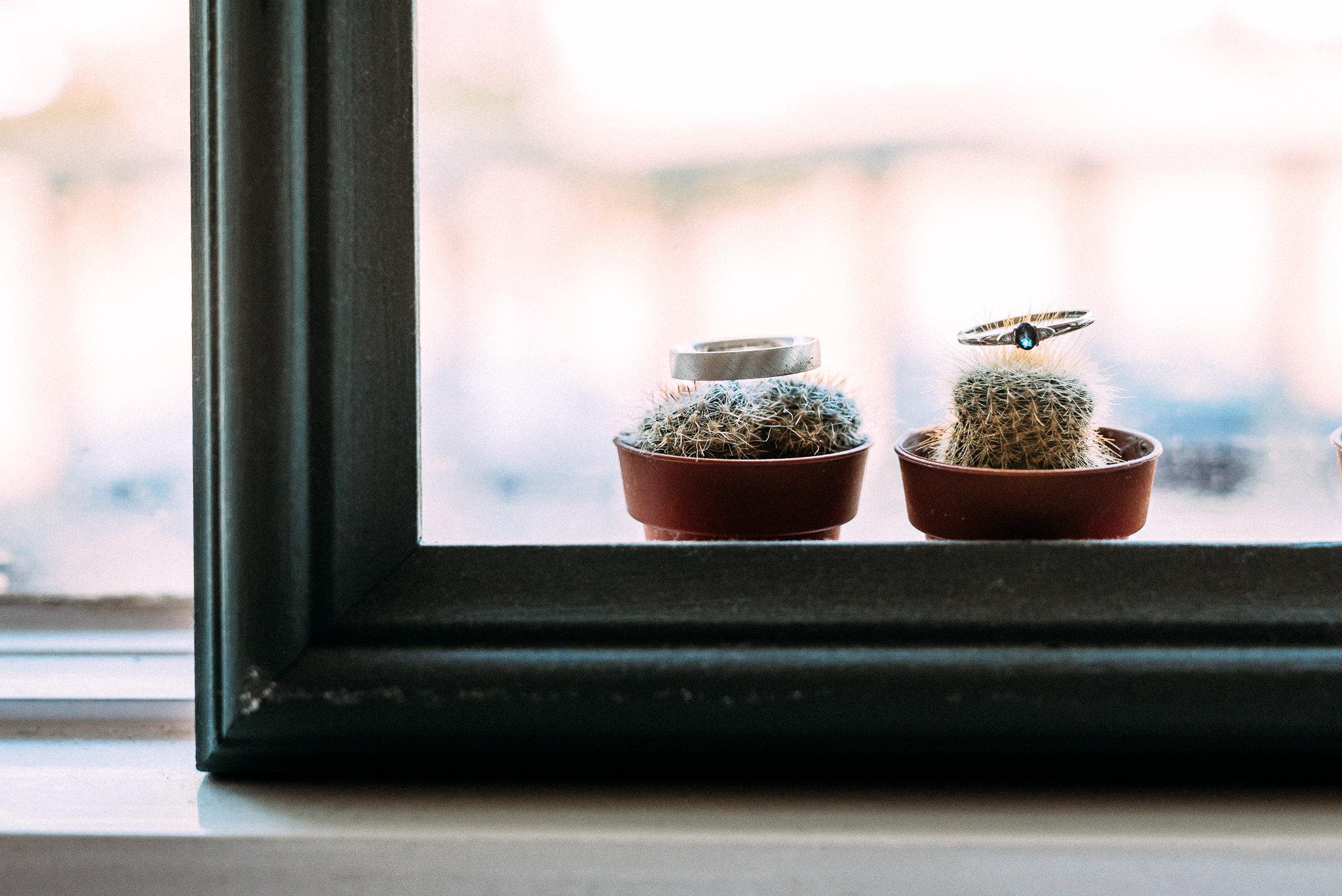 trouwringen cactus