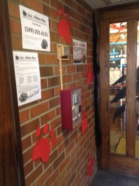 Campus Notices | AND THE WINNER IS....Spirit Splash Door ...