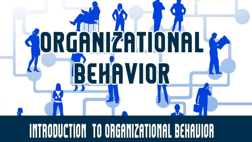 theory, Why Managers Need To Understand Organizational Behavior, CX Master