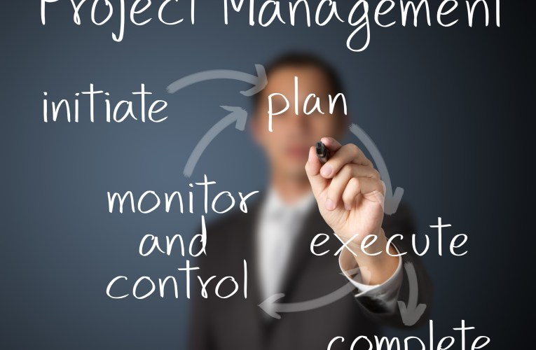 Top 3 Project Management Software Options for the Small Business
