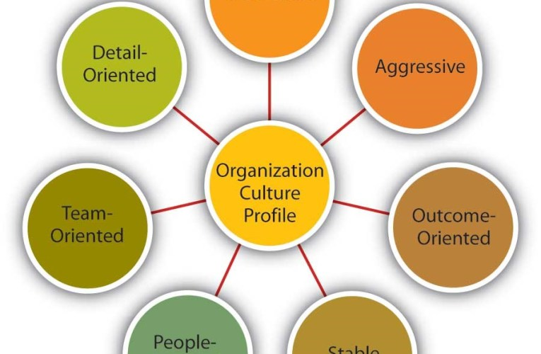 Developing and Understanding Organizational Culture