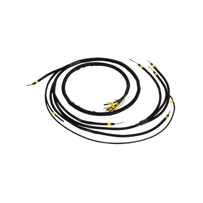 Flying Loom Wire Harness for LS1 lSx Engine Cam Crank Map Water Fuel