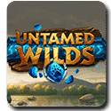 Untamed Wilds Yggdrasil slot logo