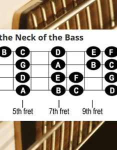 also notes on the neck of bass cyberfretbass rh