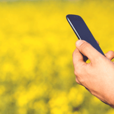 Spring clean your mobile devices