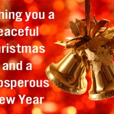 Wishing you a peaceful Christmas and a prosperous New Year