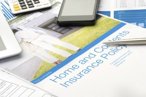 Homeowners' Insurance Policy Identity Theft Coverage