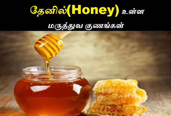 honey benefits in tamil