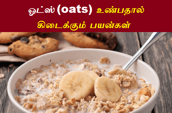 oats benefits in tamil