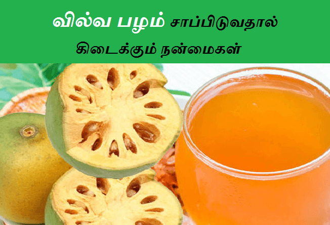 vilvam benefits in tamil