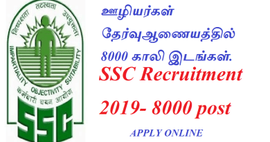 tn govt jobs ssc