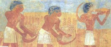 Le Pain: de la préhistoire au Moyen-âge!