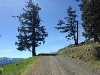 Getting near the top of the Anderson Butte Road climb prior to the turnoff.