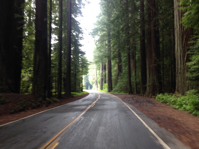 A flat stretch of road along the Avenue.