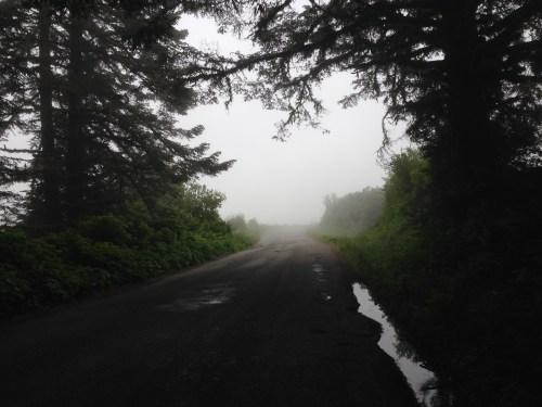 So much fog!