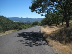 Paved descent on Salt Creek Road.
