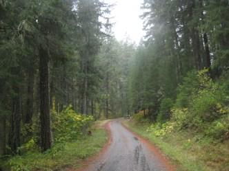 It's a nice road.