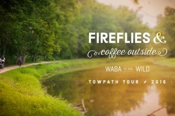 Fireflies & Coffee Outside - WABA in the Wild