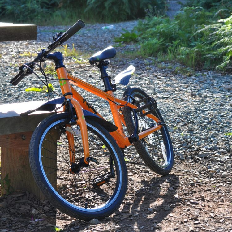 "Leasing a kids bike - Review of Frog 55 kids bike with 20"" wheels"