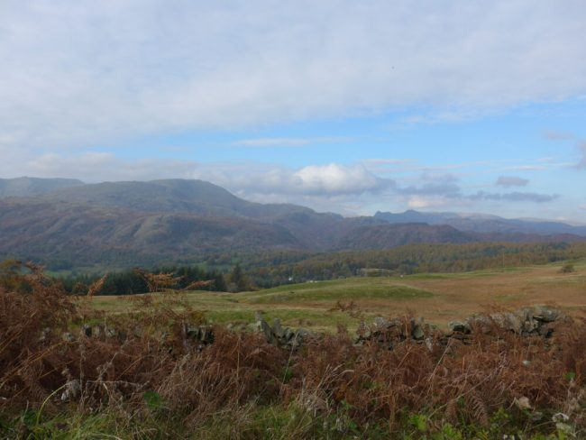 View from the cycling trails at Grizedale Forest