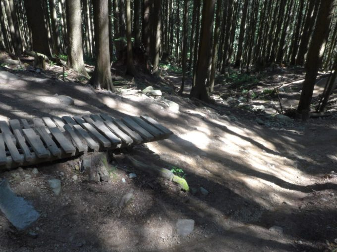 Kona mountain bikes for teenagers - Vancouver North Shore