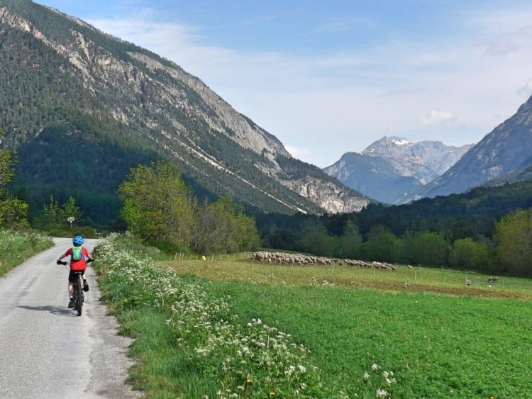 Family cycling in the Vallée de la Clarée in the French Alps - a mix of quite roads, trails and single track - perfect for kids