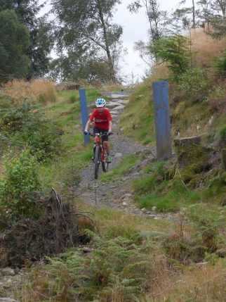 Review of the Islabikes Creig - in action at Kirroughtree MTB trail