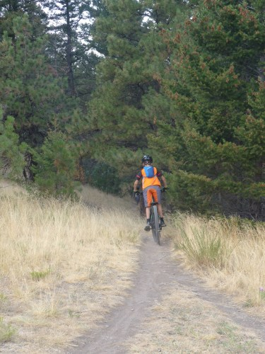 Downhill on the Diretissima Trail Helena Montana