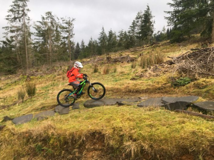 Fun on the Blue mountain biking trail with the kids at Whinlatter Forest, Cumbria