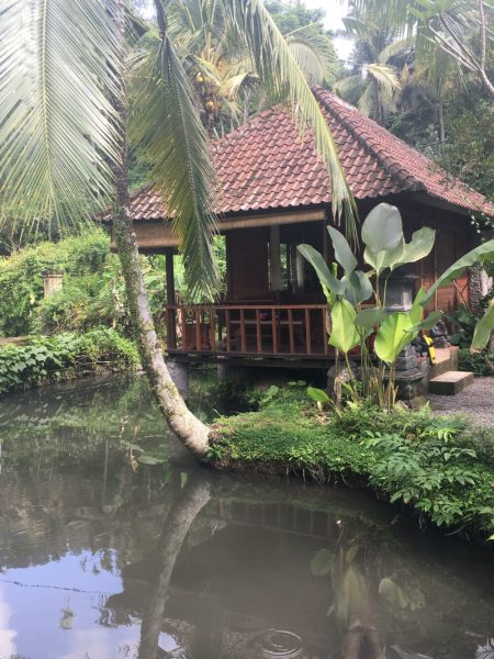 Bali family cycling holiday - accommodation on Day 1