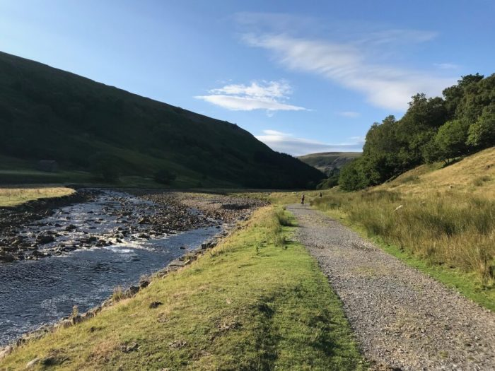 The only flat section of Swale Trail between Keld and Gunnerside - kids need to be fit and competent mountain bikers to get this far on a family ride