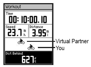 virtual partner