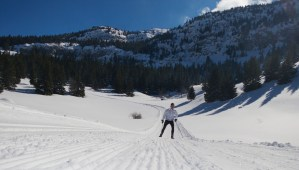 Cross Country Skiing atop the Plateau