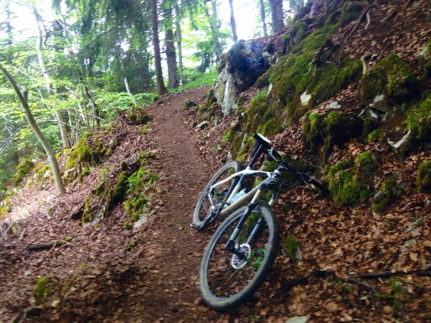 Trail to Col de Tréchauffée
