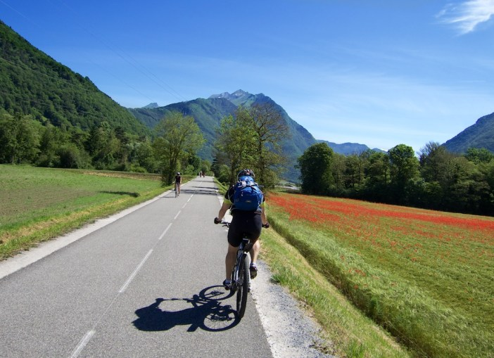 Annecy Bike Path and poppies