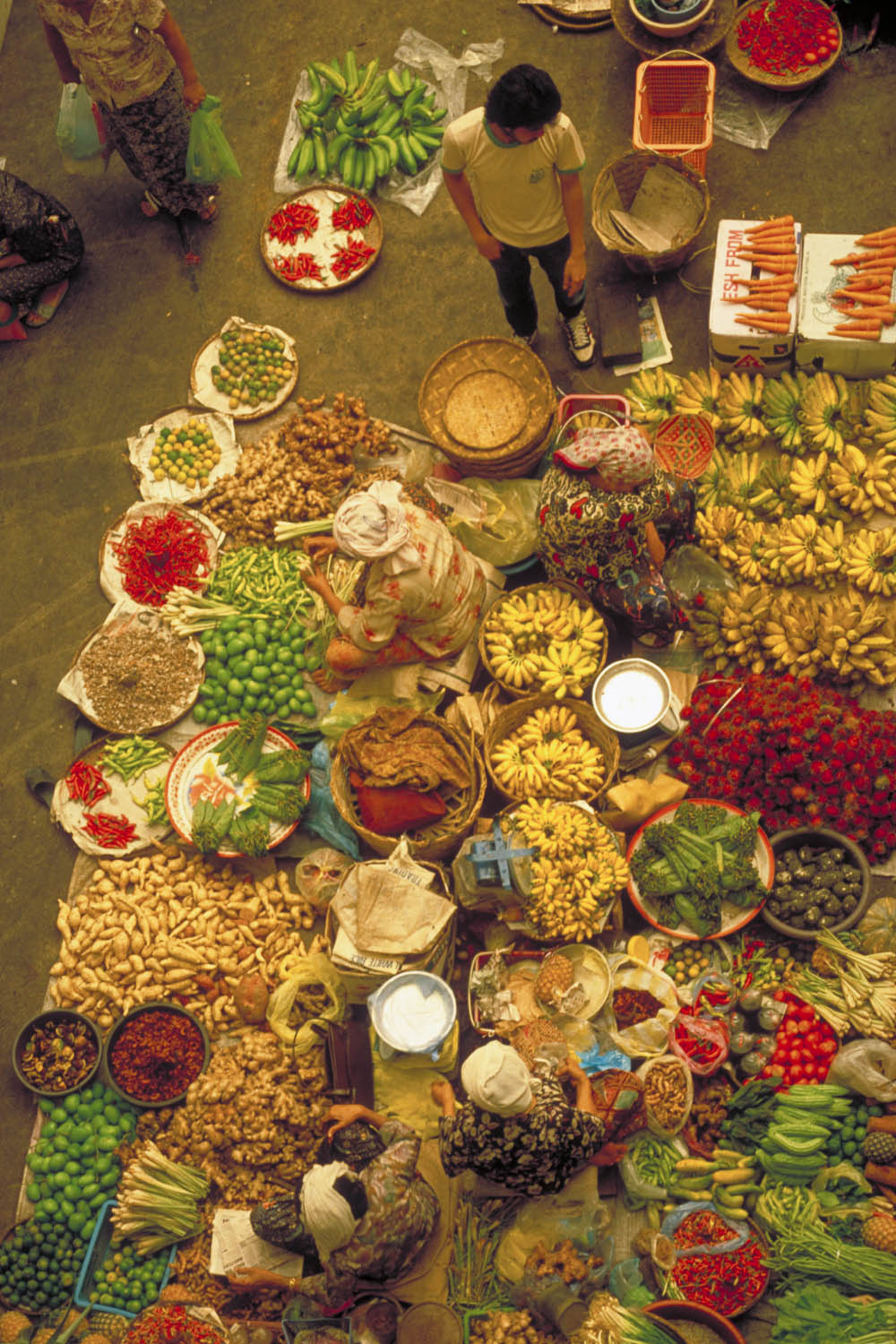 the market from a bird's eye view