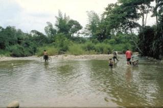 Crossing a jugle river